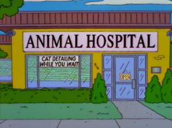 Animal Hospital.png