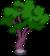 Holo-Tree 0.png