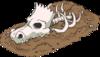 Dinosaur Skeleton.png