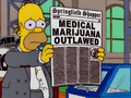 Springfield Shopper Medical Marijuana Outlawed.png
