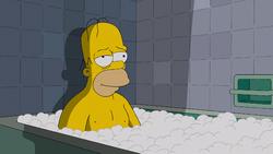 THOHXXV - Homer.PNG