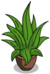 Small Plant.png