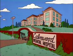 calmwood mental hospital